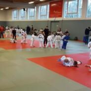 11 Medaillen in Strausberg erkämpft